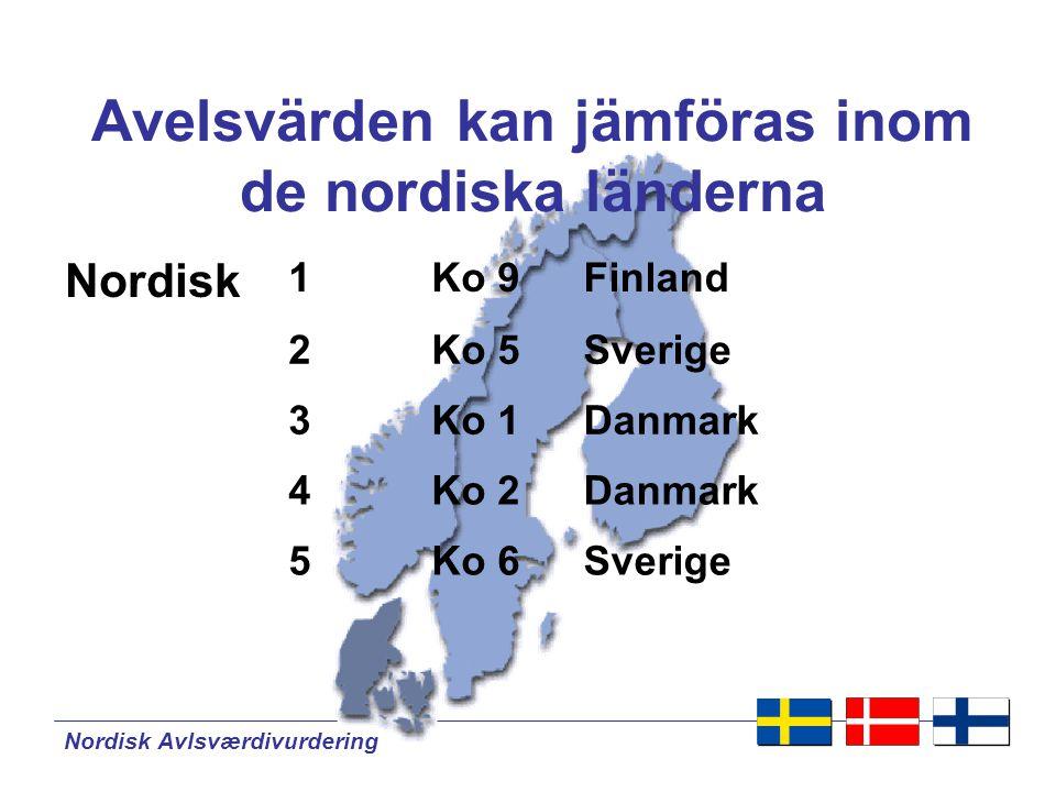 Nordisk Avlsværdivurdering Från nationellt till Nordisk SRB-tjur Backgård Danskt avelsvärde Finskt avelsvärde Svenskt avelsvärde 1.4xx döttrar 1.99x döttrar 24.xxx döttrar Nordiskt avelsvärde 28.389 döttrar NationellNordisk