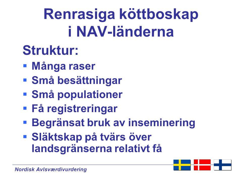 Nordisk Avlsværdivurdering Avelsvärdering av köttboskap.
