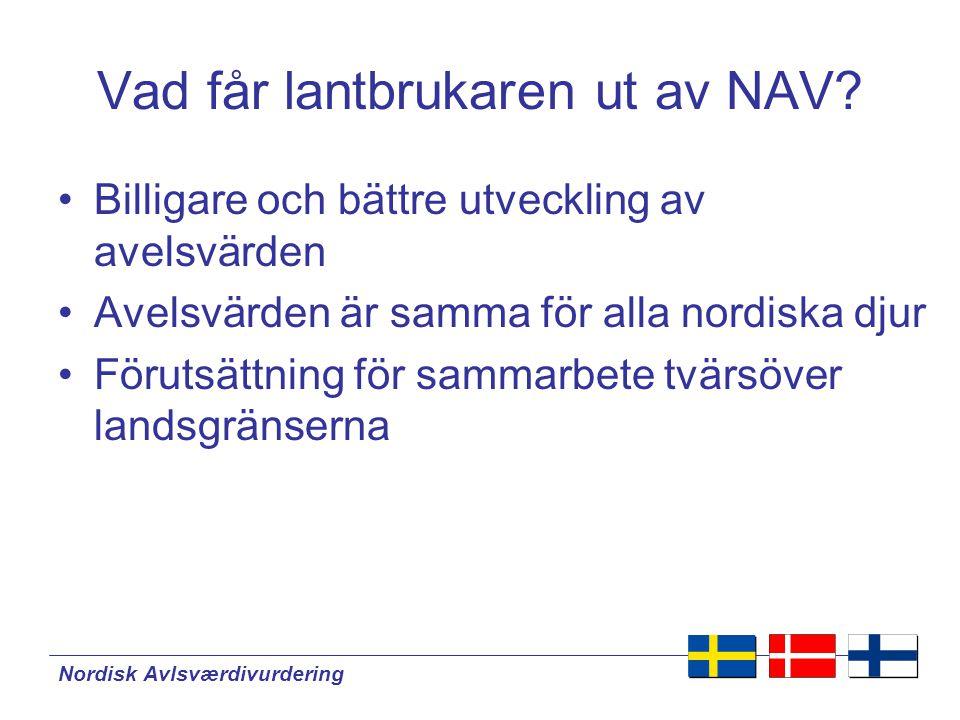 Nordisk Avlsværdivurdering NAV i framtiden •Deltagande av flera länder.