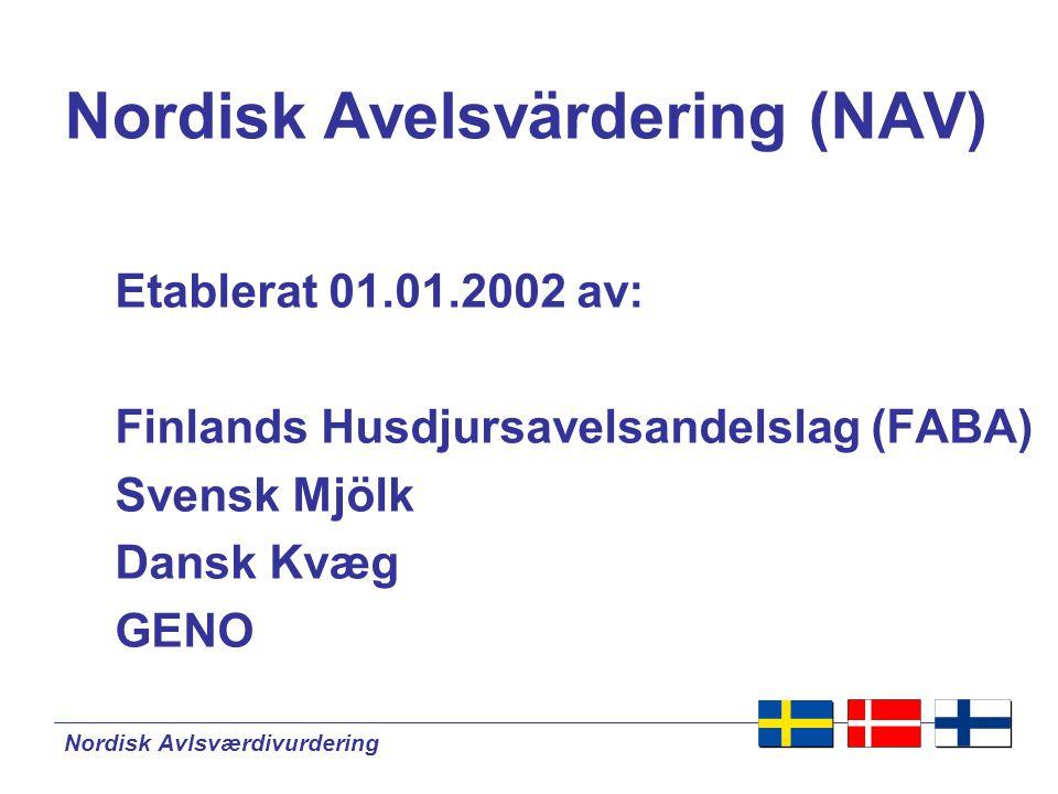 Nordisk Avlsværdivurdering Nordisk Avelsvärdering  Ansvarig för beräkning av avelsvärden för nötkreatur i Finland, Sverige och Danmark  2002 – Utveckling startades  15.