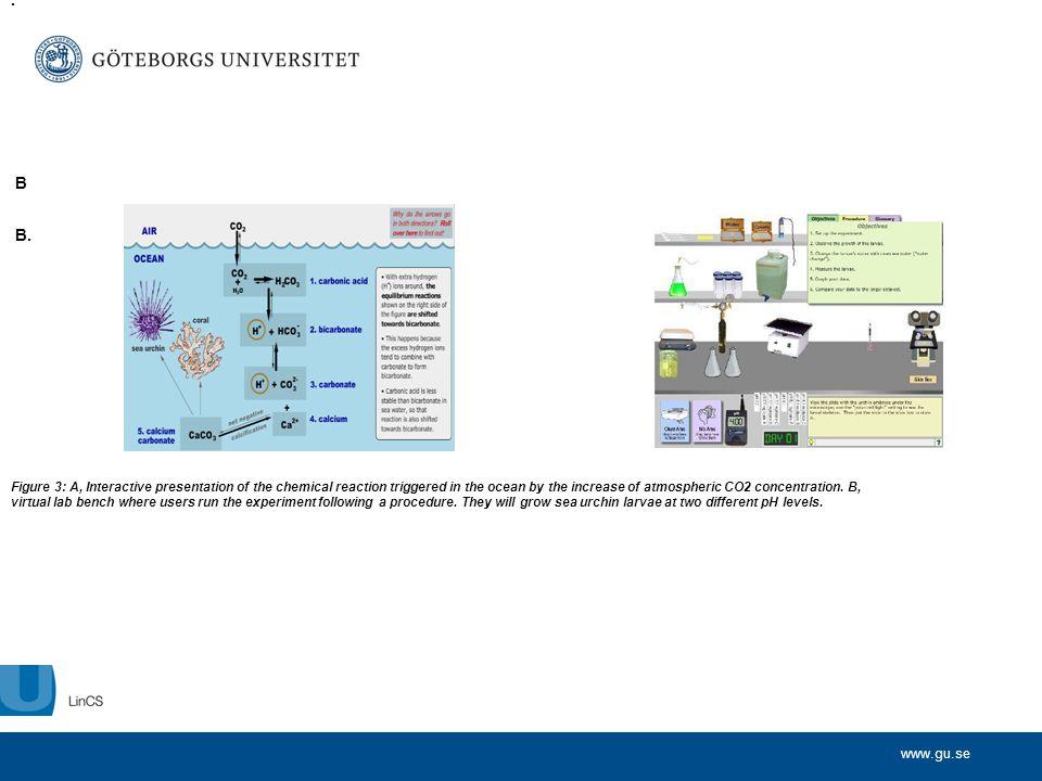 www.gu.se Människans två utvecklingslinjer Ålder Biologisk utvecklingslinje Sociokulturell utvecklingslinje