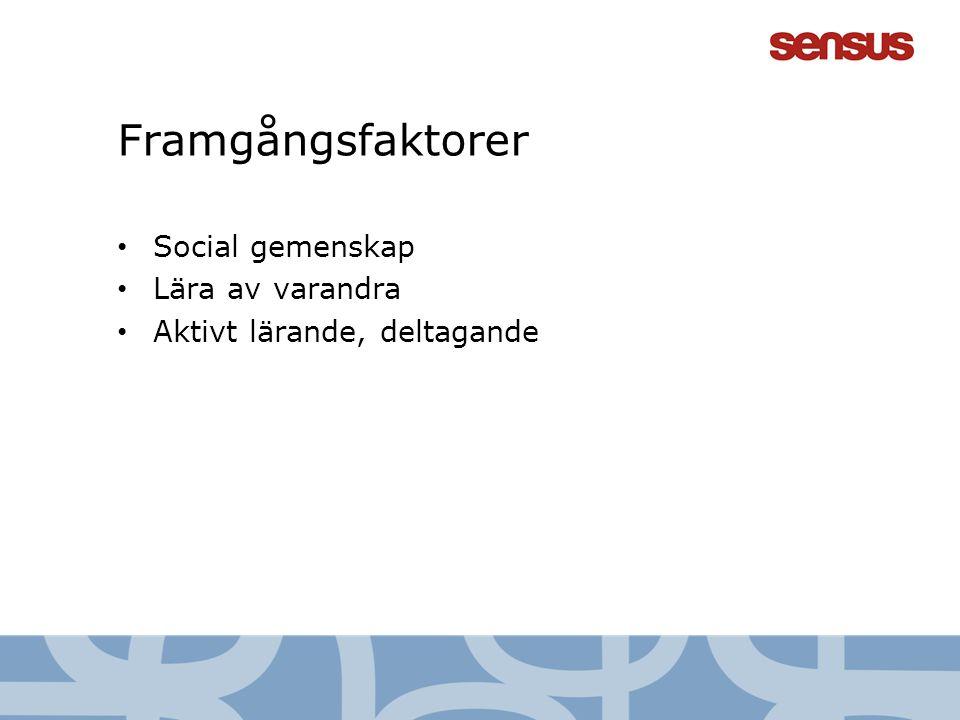Framgångsfaktorer • Social gemenskap • Lära av varandra • Aktivt lärande, deltagande