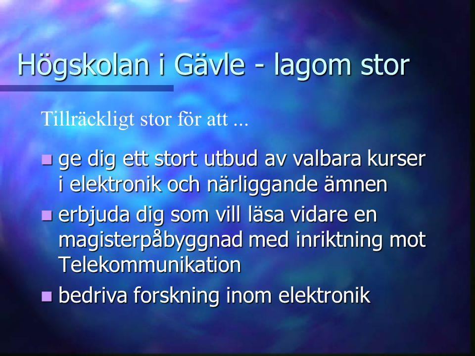 Högskolan i Gävle - lagom stor  skapa gemenskap mellan elektronikstudenterna  kommunen skall garantera dig en bostad  du skall få ett personligt be