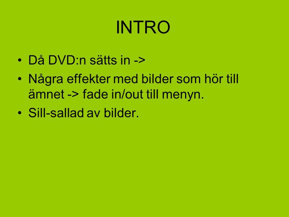 INTRO •Då DVD:n sätts in -> •Några effekter med bilder som hör till ämnet -> fade in/out till menyn.