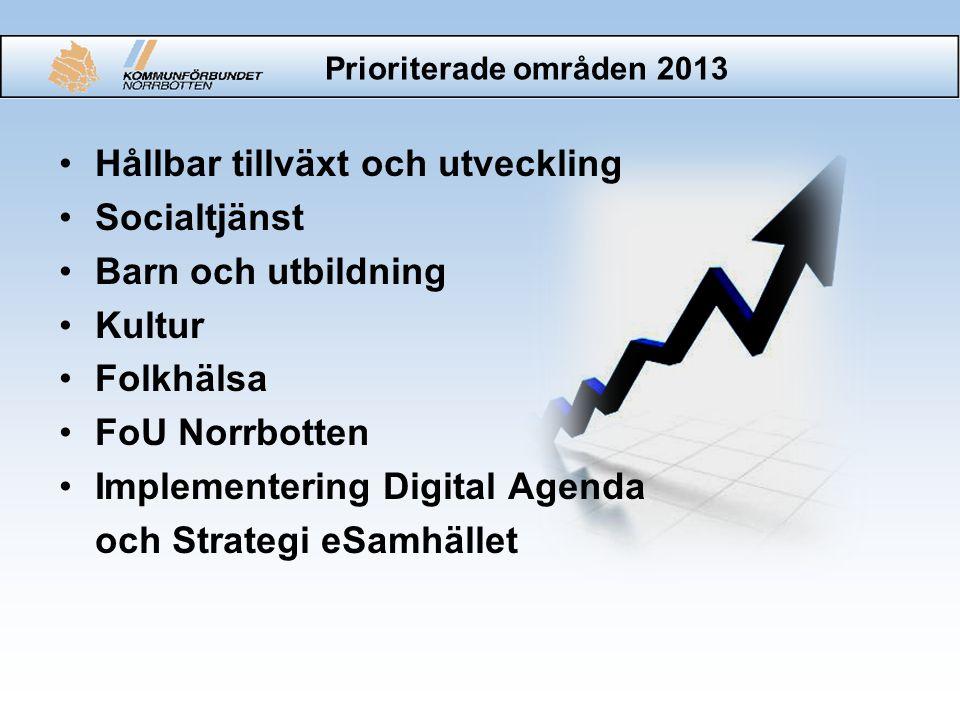 Prioriterade områden 2013 •Hållbar tillväxt och utveckling •Socialtjänst •Barn och utbildning •Kultur •Folkhälsa •FoU Norrbotten •Implementering Digit