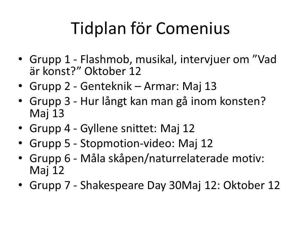 Tidplan för Comenius • Grupp 1 - Flashmob, musikal, intervjuer om Vad är konst Oktober 12 • Grupp 2 - Genteknik – Armar: Maj 13 • Grupp 3 - Hur långt kan man gå inom konsten.