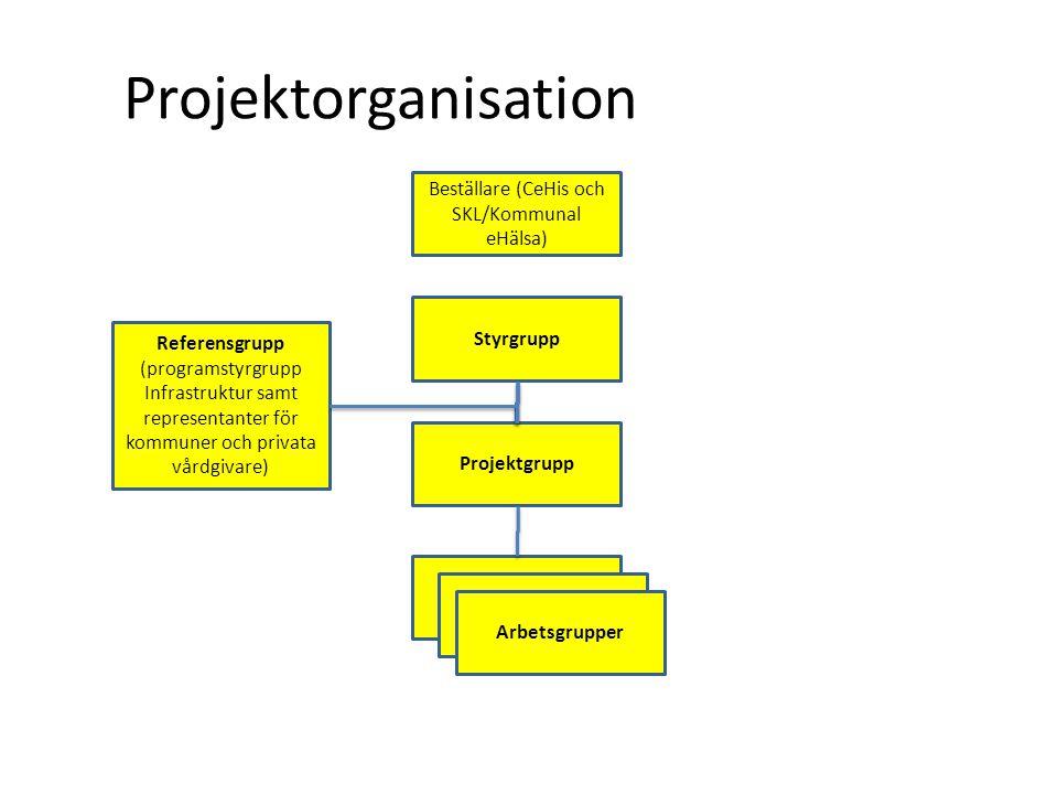 Projektorganisation Styrgrupp Referensgrupp (programstyrgrupp Infrastruktur samt representanter för kommuner och privata vårdgivare) Beställare (CeHis