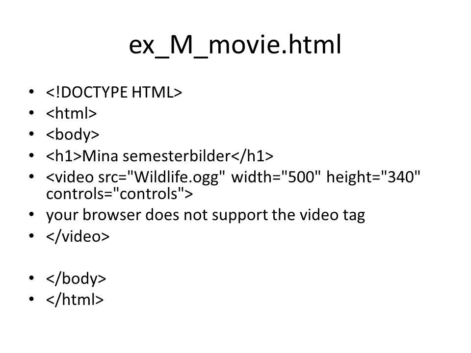 ex_M_movie.html • • Mina semesterbilder • • your browser does not support the video tag •