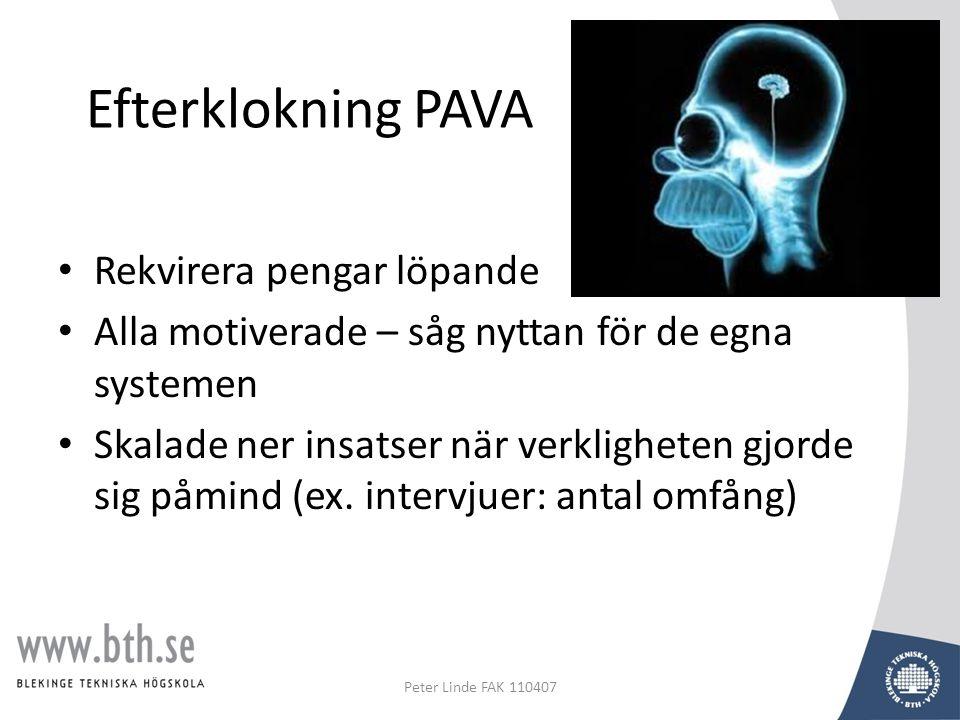Efterklokning PAVA • Rekvirera pengar löpande • Alla motiverade – såg nyttan för de egna systemen • Skalade ner insatser när verkligheten gjorde sig påmind (ex.