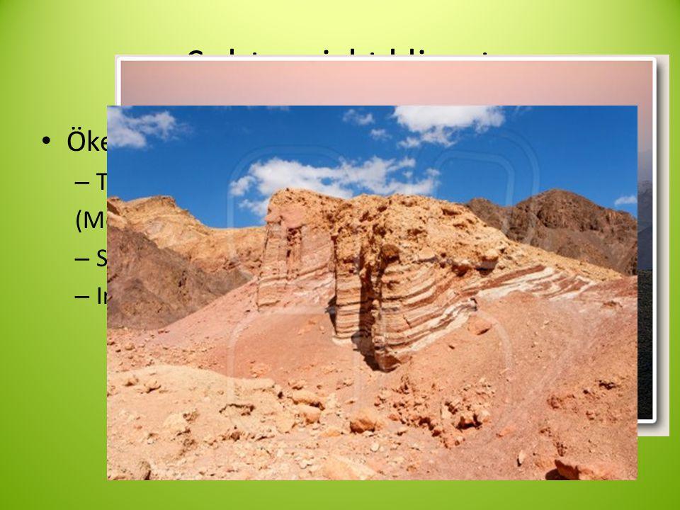 Subtropiskt klimat • Ökenklimat – Torrt och varmt (Men även torrt och kallt) – Stora temperaturskillnader – Inte bara sand, mest sten • Ahaggar Algeriet