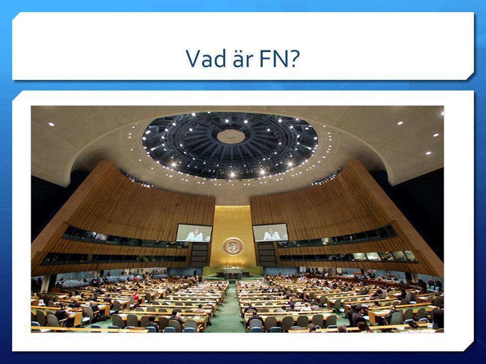 Vad är FN?  Förenta Nationerna. Världens länder som samlas och diskuterar med varandra.  Generalförsamlingen.