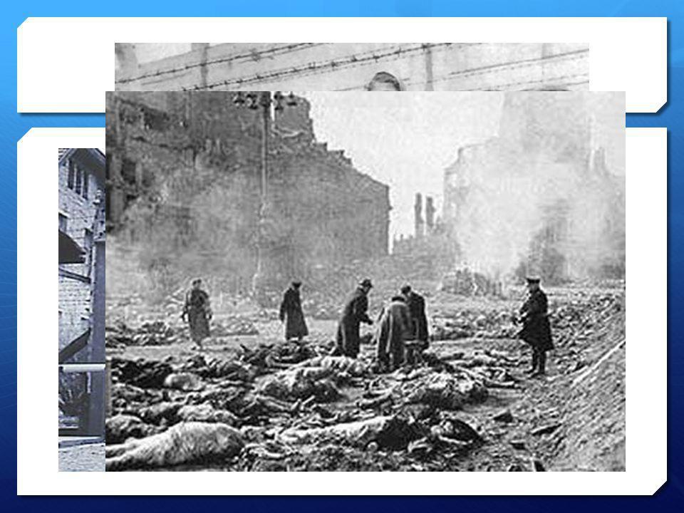 Varför FN  Efter andra världskriget Aldrig mer!