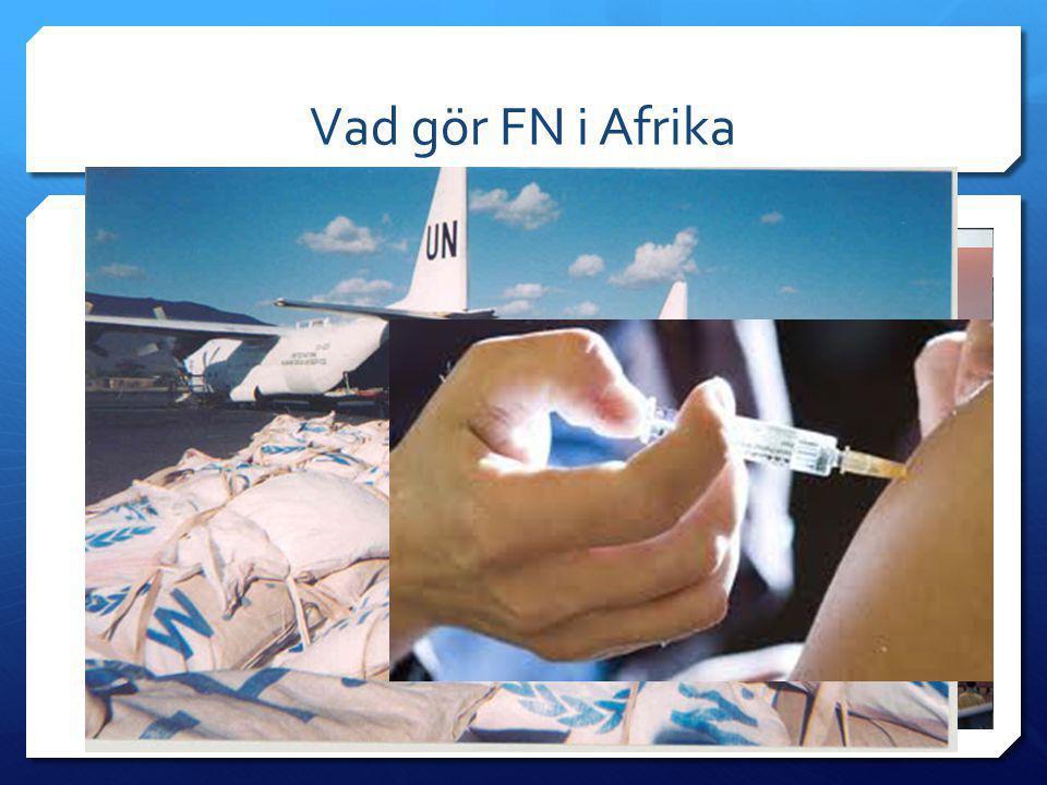Vad gör FN i Afrika  Många projekt (men med olika resultat)  Fred / Krig  Kongo  Libyen  Rwanda  Västsahara  Flyktingläger  Mat  Vaccination