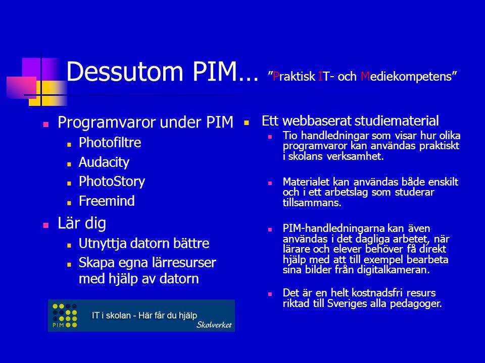 """Dessutom PIM… """"Praktisk IT- och Mediekompetens""""  Programvaror under PIM  Photofiltre  Audacity  PhotoStory  Freemind  Lär dig  Utnyttja datorn"""