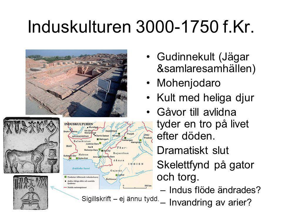 Induskulturen 3000-1750 f.Kr. •Gudinnekult (Jägar &samlaresamhällen) •Mohenjodaro •Kult med heliga djur •Gåvor till avlidna tyder en tro på livet efte