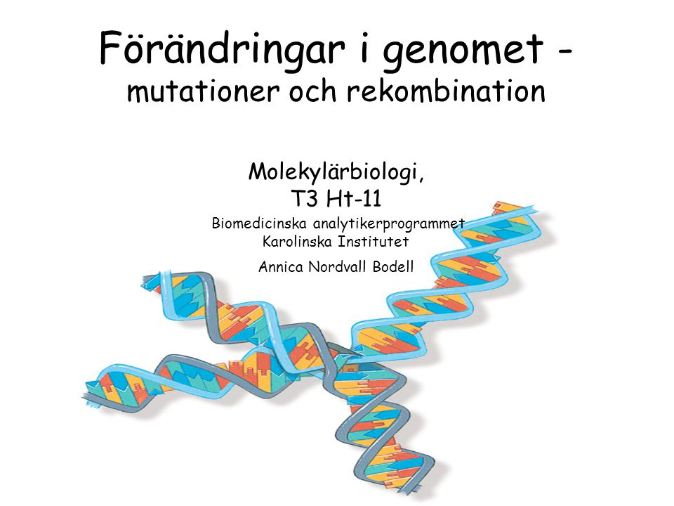 Kunskapsmål för detta avsnitt Från kursplan: •på ett övergripande sätt förklara de mekanismer som ligger bakom förändringar i genomet och dra slutsatser av vad detta kan få för konsekvenser för celler och individer