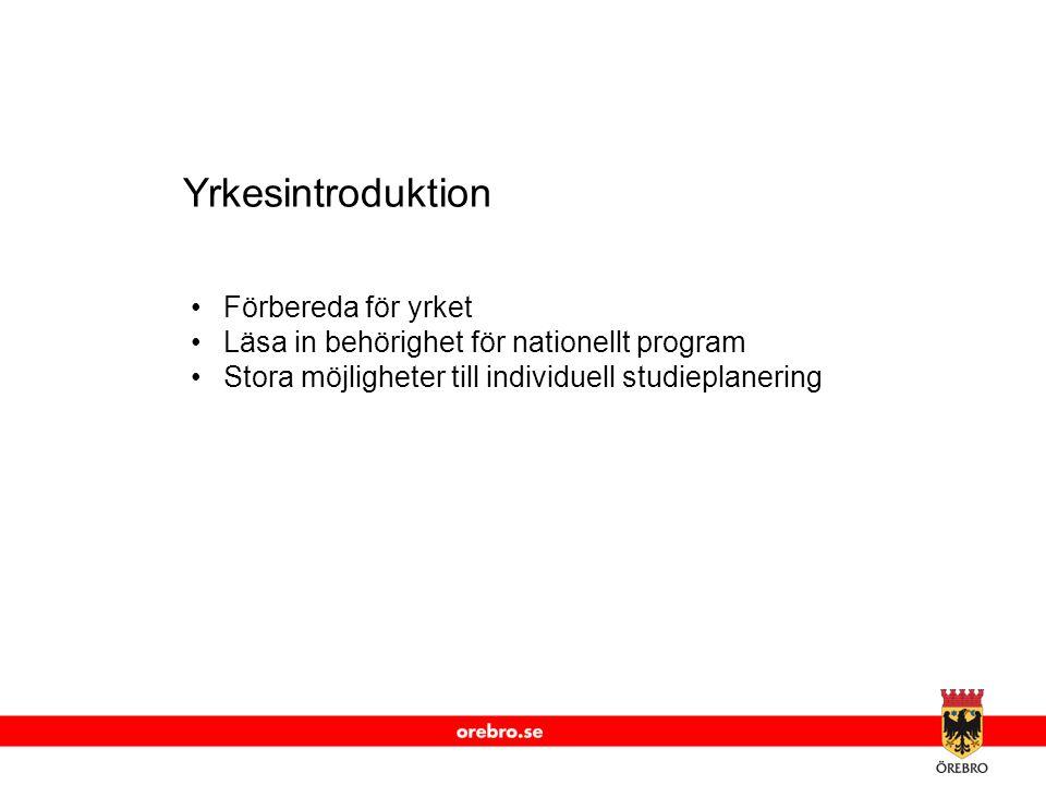www.orebro.se Yrkesintroduktion •Förbereda för yrket •Läsa in behörighet för nationellt program •Stora möjligheter till individuell studieplanering