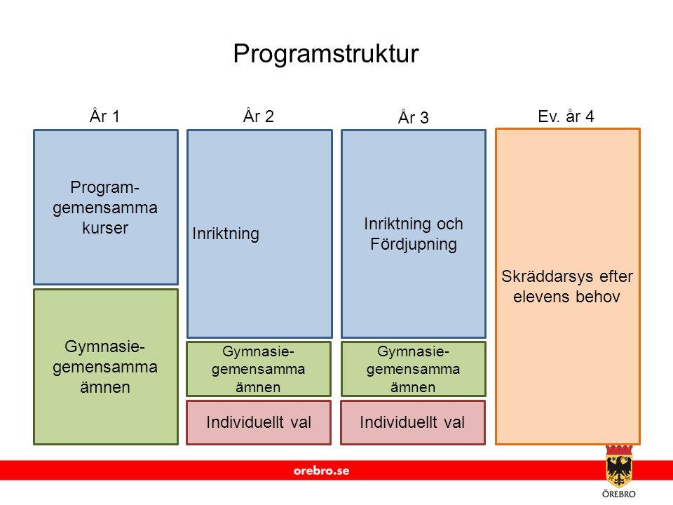 www.orebro.se Program- gemensamma kurser Gymnasie- gemensamma ämnen Inriktning Gymnasie- gemensamma ämnen Individuellt val Inriktning och Fördjupning Gymnasie- gemensamma ämnen Individuellt val Skräddarsys efter elevens behov År 1År 2 År 3 Ev.