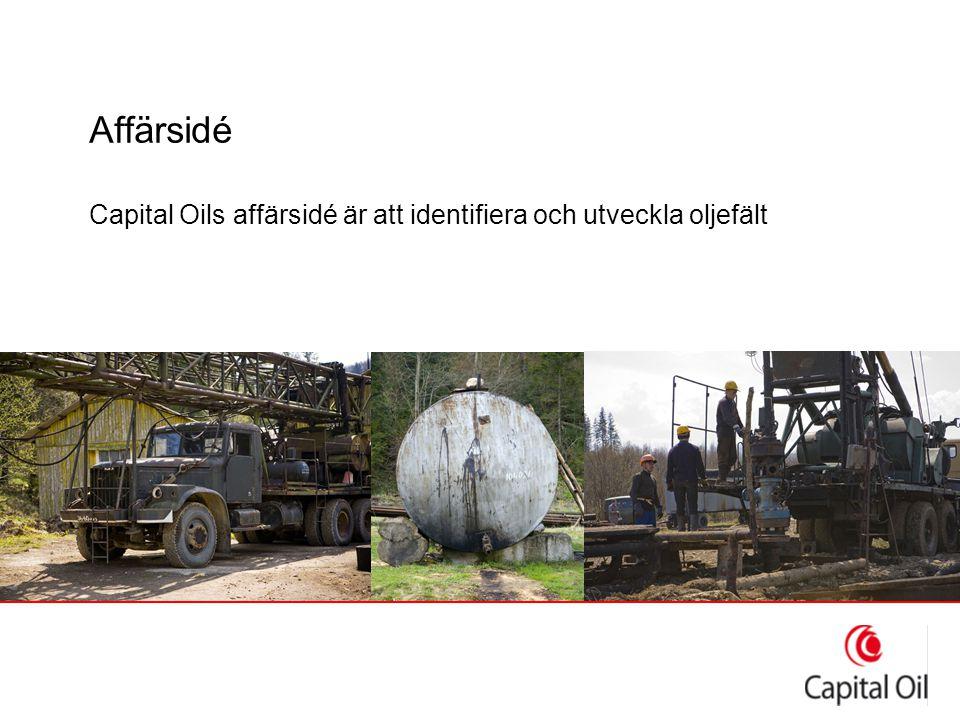 Strategi ●Identifiera undervärderade oljefält ●Utveckla fälten med modern teknik ●Producera olja ●Sälja den producerade oljan