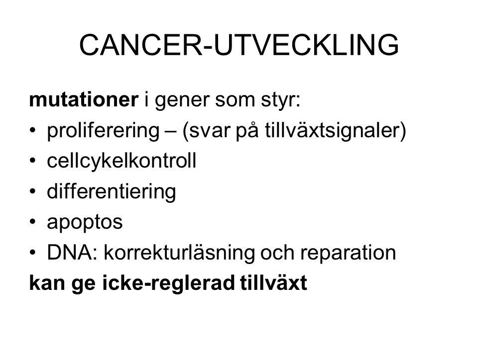 CANCER-UTVECKLING mutationer i gener som styr: •proliferering – (svar på tillväxtsignaler) •cellcykelkontroll •differentiering •apoptos •DNA: korrektu