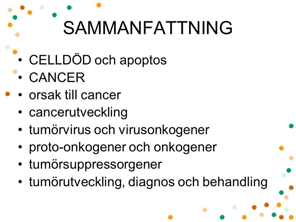 SAMMANFATTNING •CELLDÖD och apoptos •CANCER •orsak till cancer •cancerutveckling •tumörvirus och virusonkogener •proto-onkogener och onkogener •tumörs