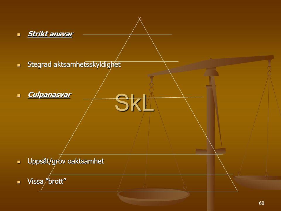 60 SkL  Strikt ansvar  Stegrad aktsamhetsskyldighet  Culpanasvar  Uppsåt/grov oaktsamhet  Vissa brott
