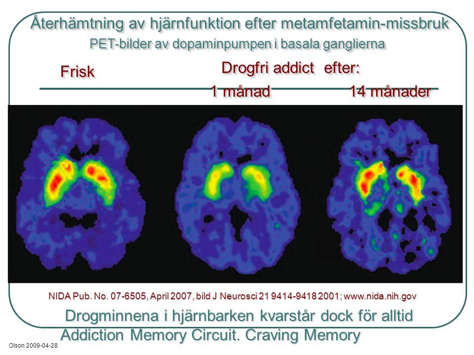 NIDA Pub. No. 07-6505, April 2007, bild J Neurosci 21 9414-9418 2001; www.nida.nih.gov Återhämtning av hjärnfunktion efter metamfetamin-missbruk Återh