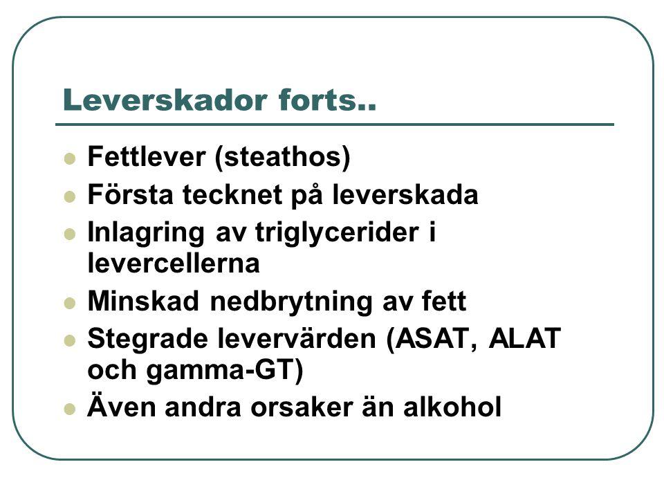 Leverskador forts..  Fettlever (steathos)  Första tecknet på leverskada  Inlagring av triglycerider i levercellerna  Minskad nedbrytning av fett 