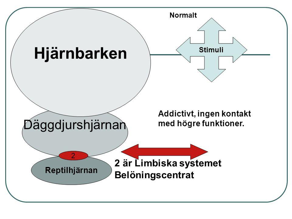 Reptilhjärnan Däggdjurshjärnan Hjärnbarken 2 2 är Limbiska systemet Belöningscentrat Normalt Stimuli Addictivt, ingen kontakt med högre funktioner.