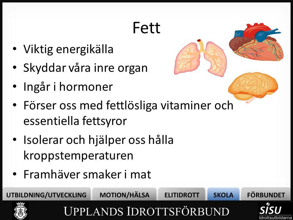 Fett • Viktig energikälla • Skyddar våra inre organ • Ingår i hormoner • Förser oss med fettlösliga vitaminer och essentiella fettsyror • Isolerar och