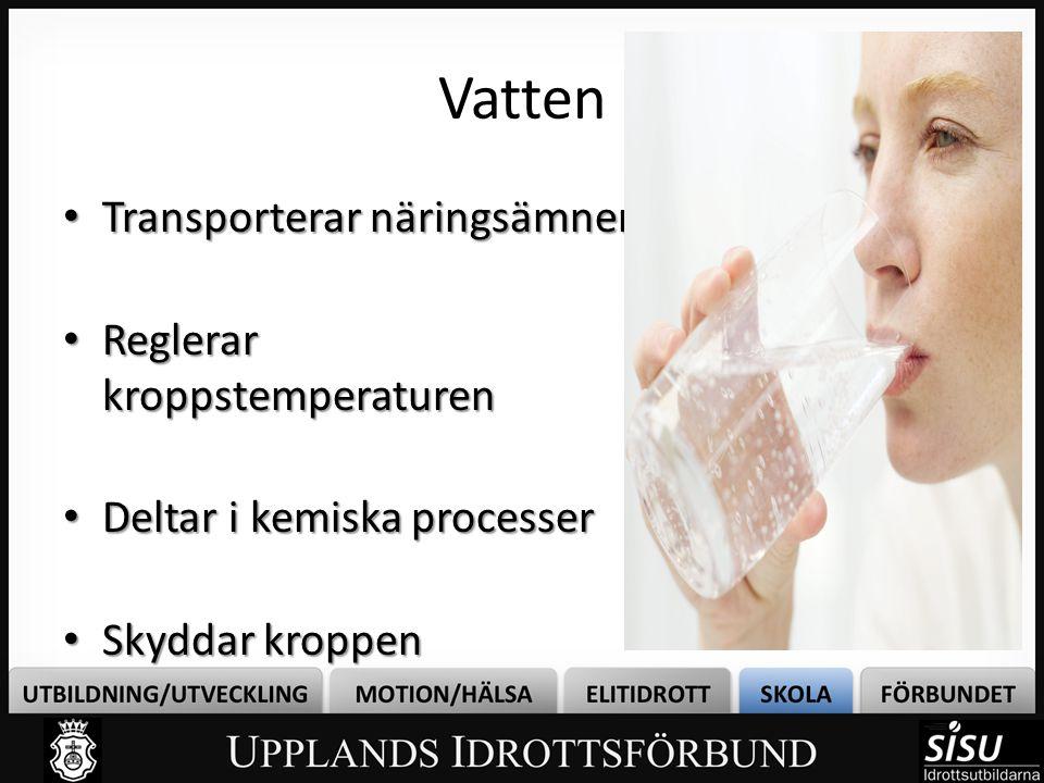 Vatten • Transporterar näringsämnen • Reglerar kroppstemperaturen • Deltar i kemiska processer • Skyddar kroppen