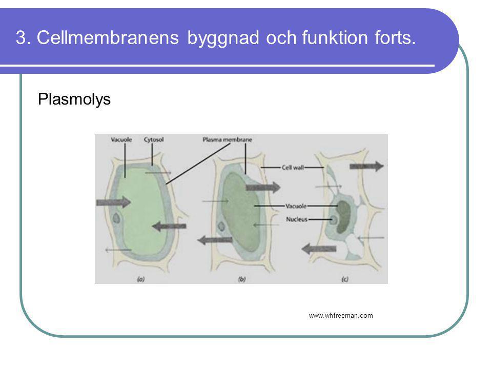 3. Cellmembranens byggnad och funktion forts. Plasmolys www.whfreeman.com
