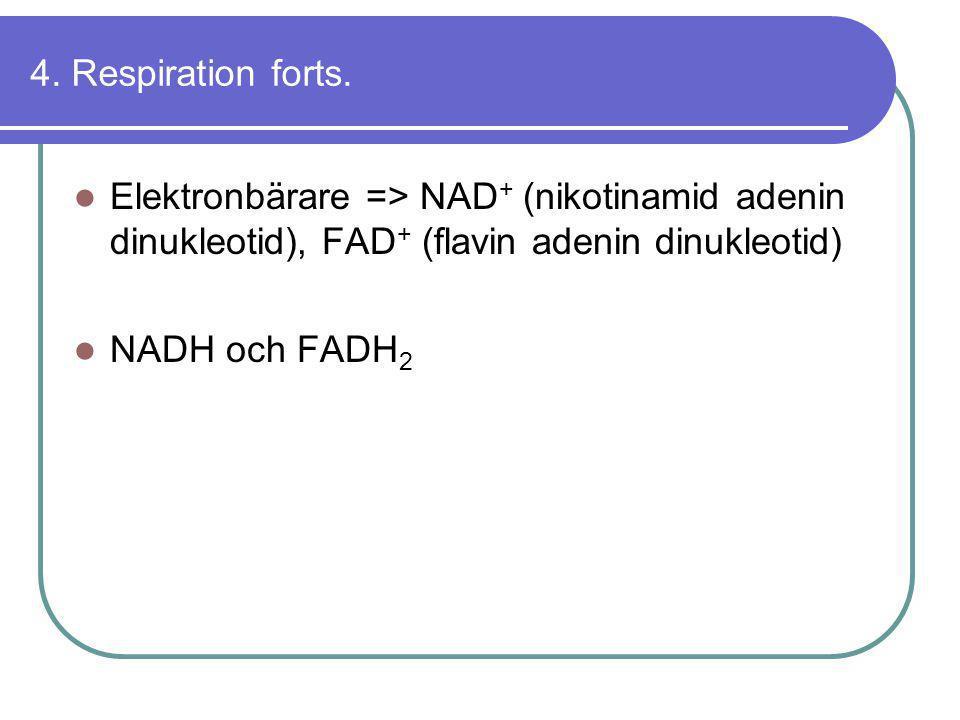 4. Respiration forts.  Elektronbärare => NAD + (nikotinamid adenin dinukleotid), FAD + (flavin adenin dinukleotid)  NADH och FADH 2