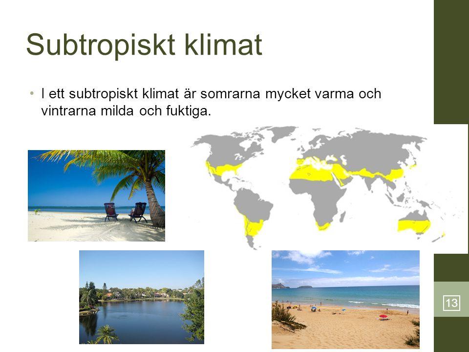 13 Subtropiskt klimat •I ett subtropiskt klimat är somrarna mycket varma och vintrarna milda och fuktiga.