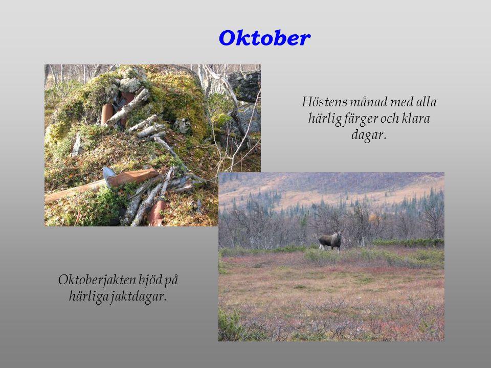 Oktober Höstens månad med alla härlig färger och klara dagar.
