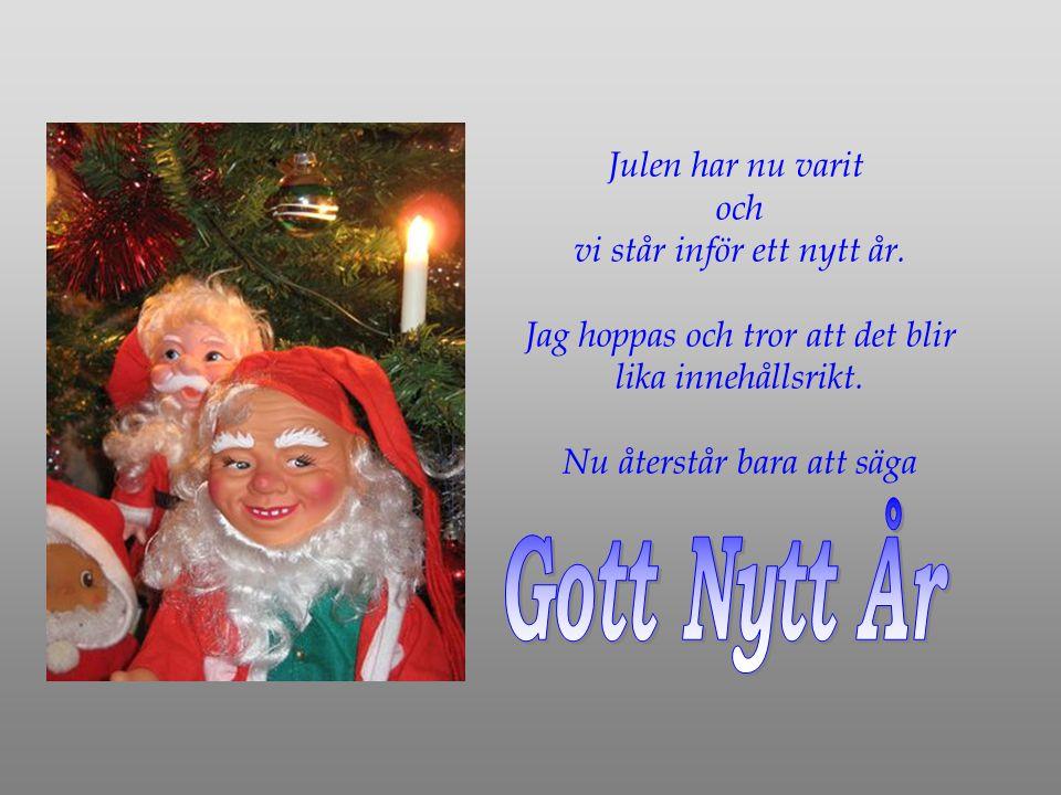 Julen har nu varit och vi står inför ett nytt år.