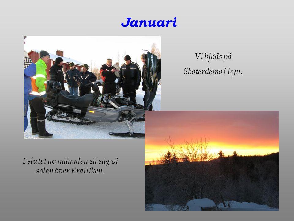 Januari Vi bjöds på Skoterdemo i byn. I slutet av månaden så såg vi solen över Brattiken.