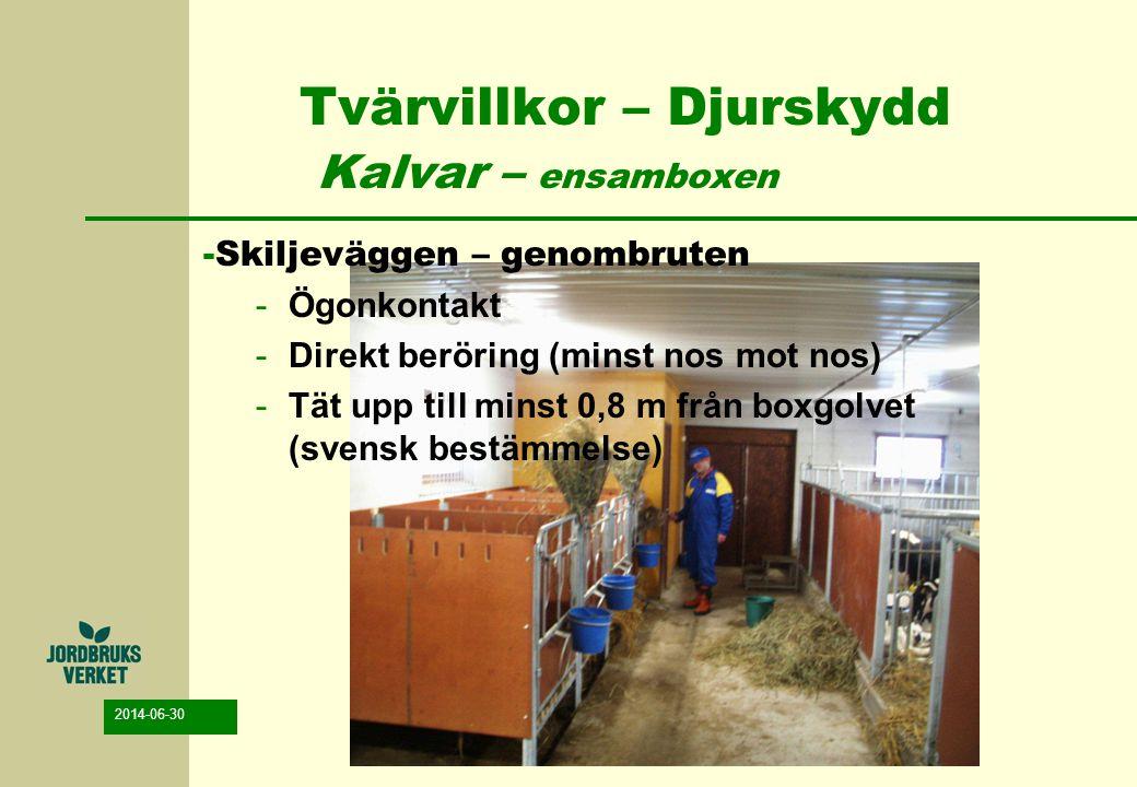 2014-06-30 Tvärvillkor – Djurskydd Kalvar – ensamboxen -Skiljeväggen – genombruten -Ögonkontakt -Direkt beröring (minst nos mot nos) -Tät upp till min