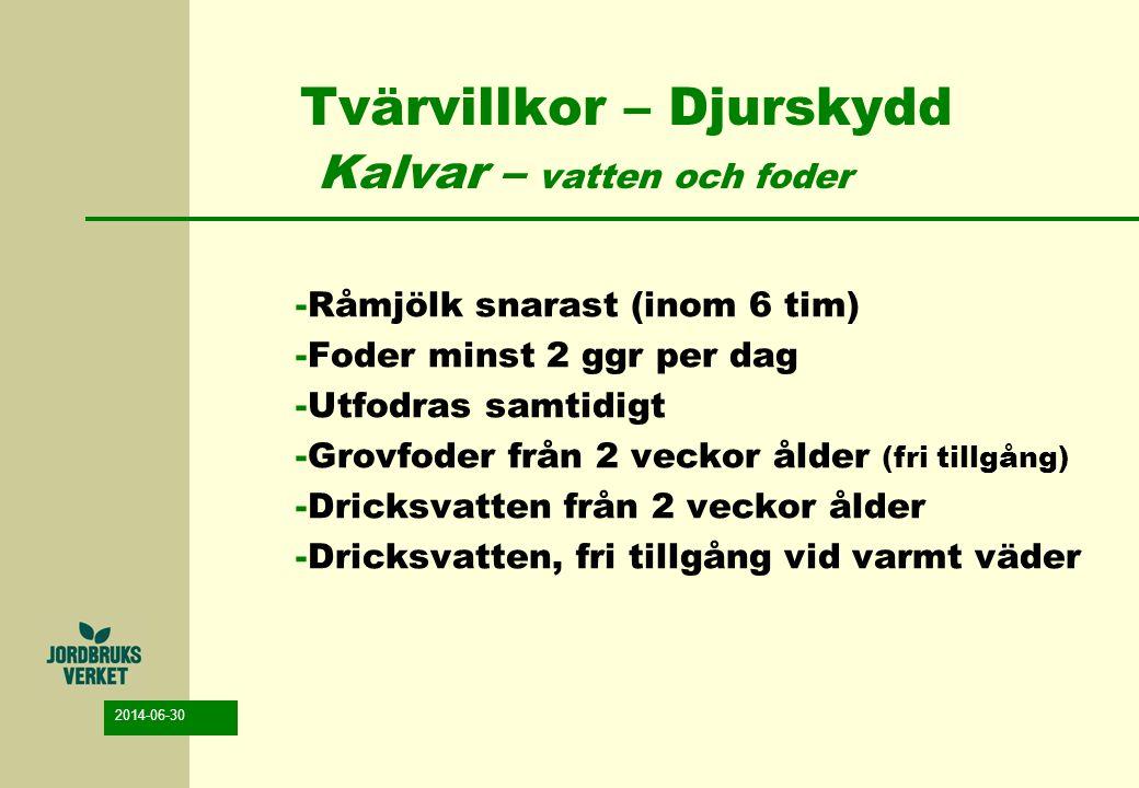 2014-06-30 Tvärvillkor – Djurskydd Kalvar – vatten och foder -Råmjölk snarast (inom 6 tim) -Foder minst 2 ggr per dag -Utfodras samtidigt -Grovfoder f