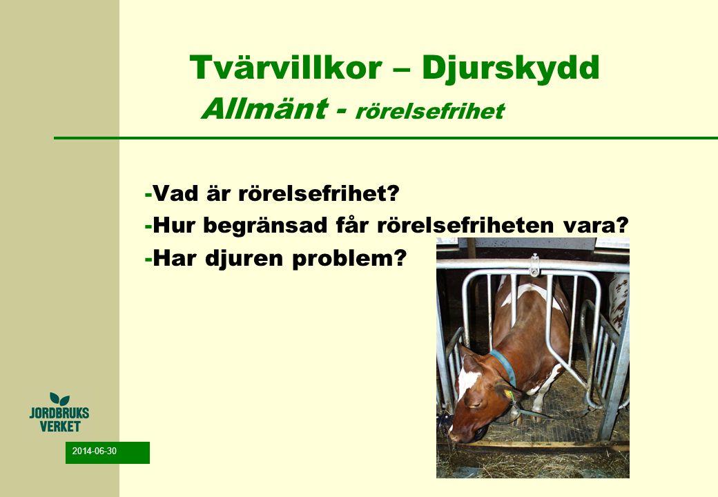 2014-06-30 Tvärvillkor – Djurskydd Allmänt - rörelsefrihet -Vad är rörelsefrihet? -Hur begränsad får rörelsefriheten vara? -Har djuren problem?