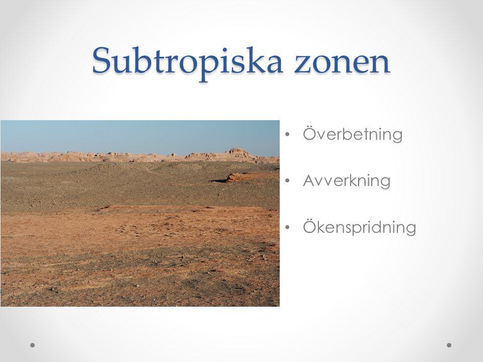 Subtropiska zonen • Överbetning • Avverkning • Ökenspridning