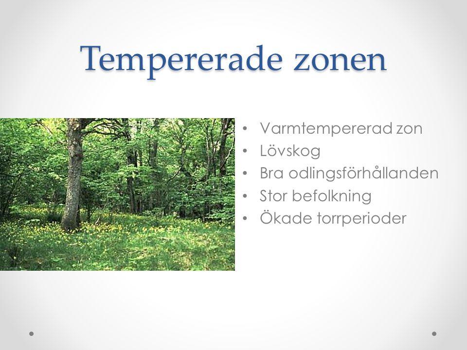 Tempererade zonen • Varmtempererad zon • Lövskog • Bra odlingsförhållanden • Stor befolkning • Ökade torrperioder