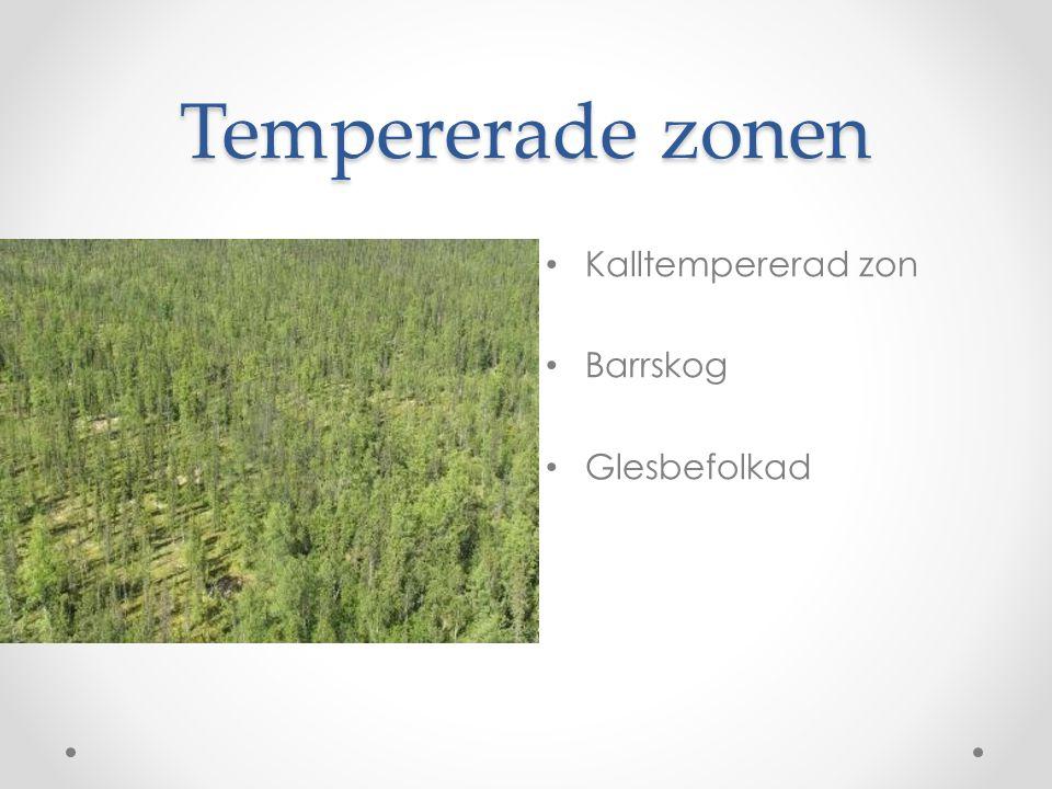 Tempererade zonen • Kalltempererad zon • Barrskog • Glesbefolkad