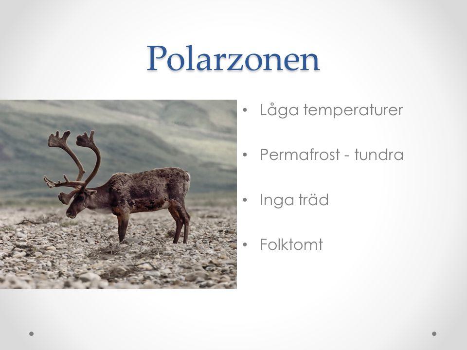 Polarzonen • Låga temperaturer • Permafrost - tundra • Inga träd • Folktomt