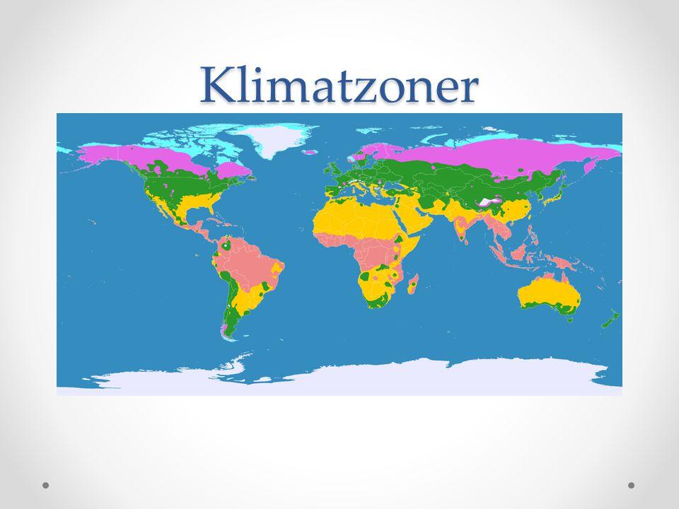 Tropiska zonen • Regnskog • Jämnt klimat året om • Fuktigt • Ganska glesbefolkat • Artrikt • 90% av växt- och djurarterna