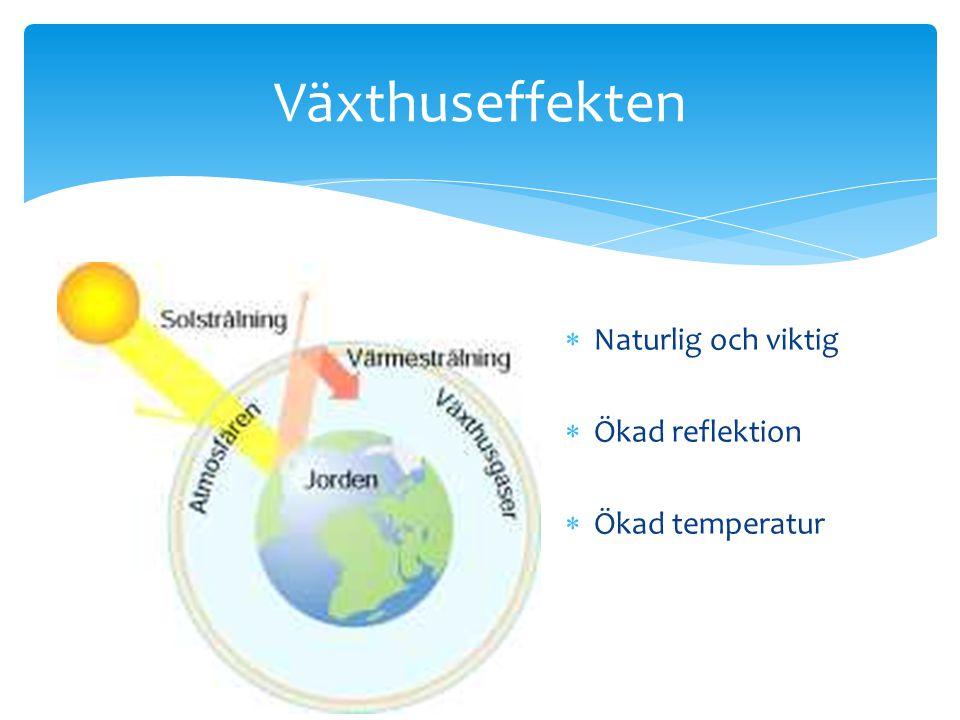 Växthuseffekten  Naturlig och viktig  Ökad reflektion  Ökad temperatur