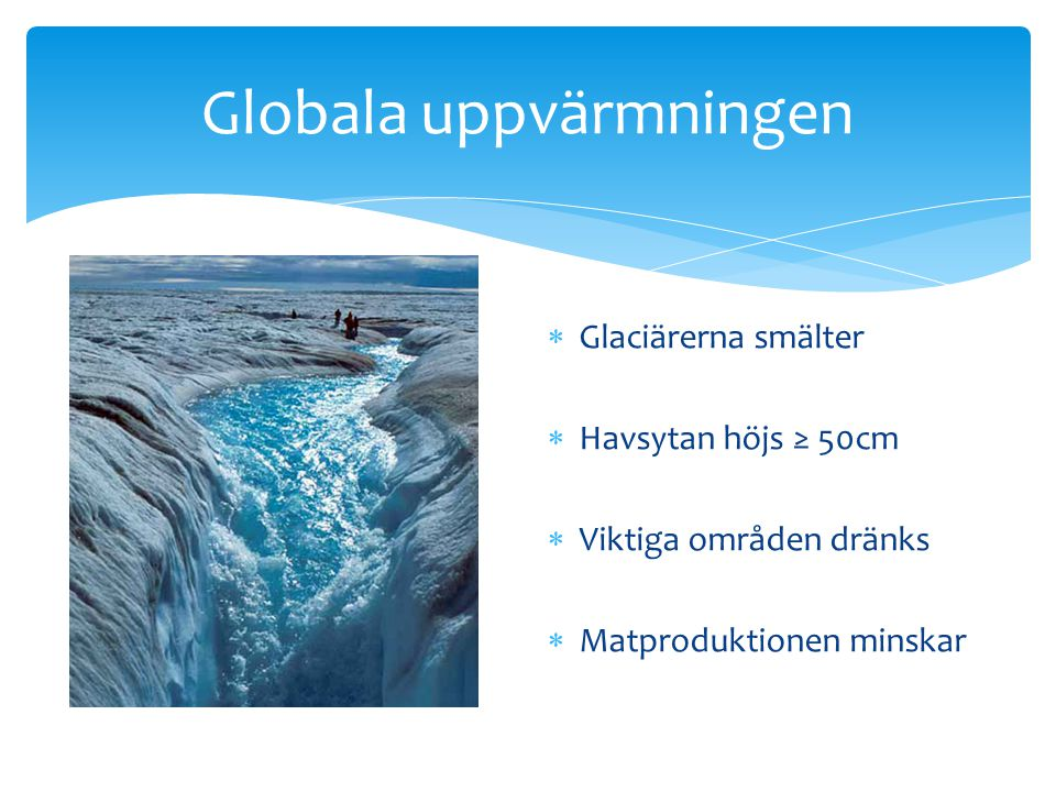 Globala uppvärmningen  Glaciärerna smälter  Havsytan höjs ≥ 50cm  Viktiga områden dränks  Matproduktionen minskar