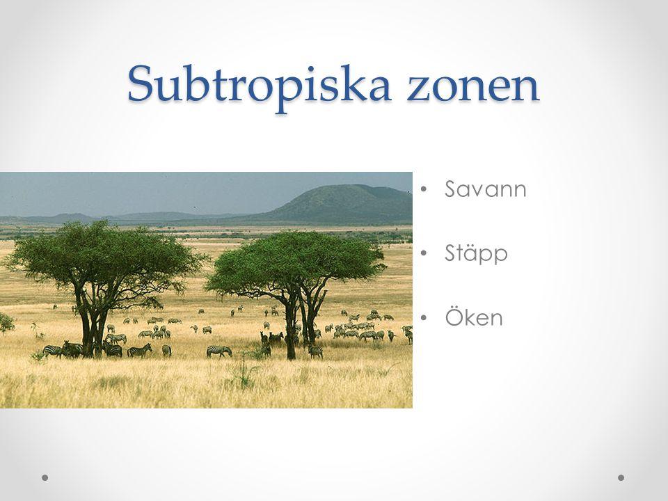 Globala uppvärmningen  Rio-konferensen 1992  Kyotoprotokollet 1997  Köpenhamn 2009  Stockholm 2013  Minskade utsläpp  Ej över 2ºC ökning