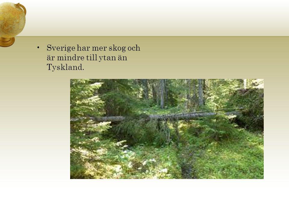 •Sverige har mer skog och är mindre till ytan än Tyskland.