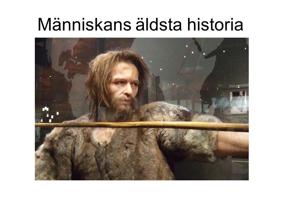 Människans äldsta historia